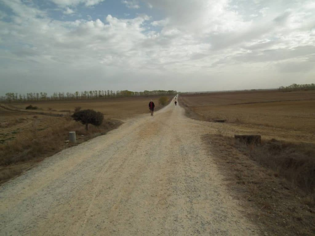 Jakobsweg - in der Meseta